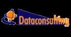 dataconsulting-logo